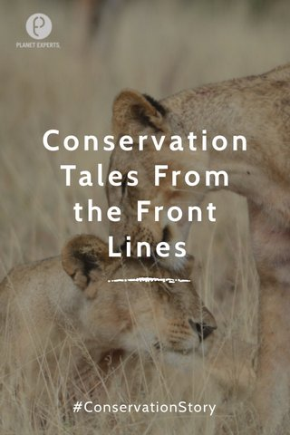 Conservation Tales From the Front Lines