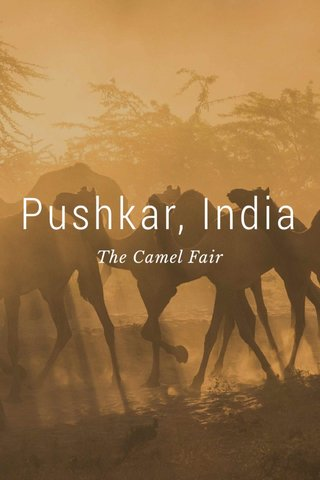 Pushkar, India The Camel Fair