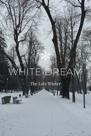 WHITE DREAM The Late Winter