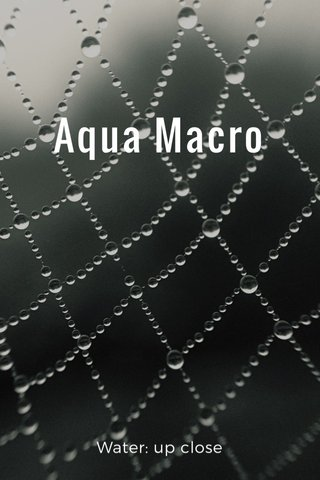 Aqua Macro Water: up close