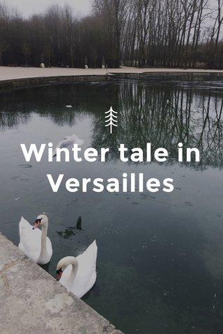 Winter tale in Versailles