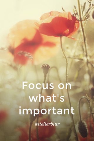 Focus on what's important #stellerblur