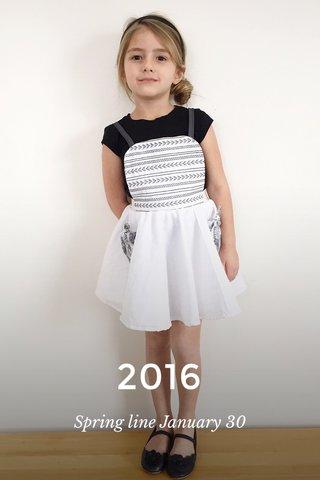 2016 Spring line January 30