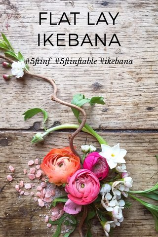 FLAT LAY IKEBANA #5ftinf #5ftinftable #ikebana