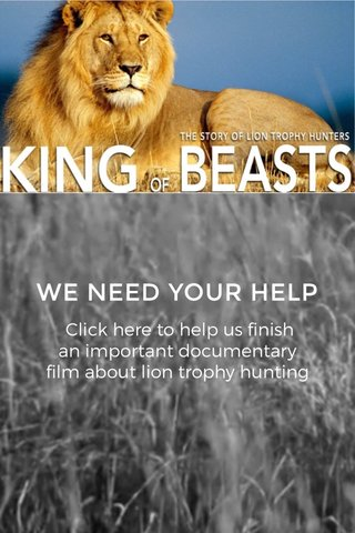 WE NEED YOUR HELP Click here to help us finish an important documentary film about lion trophy hunting