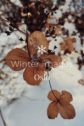 Winter images Oslo