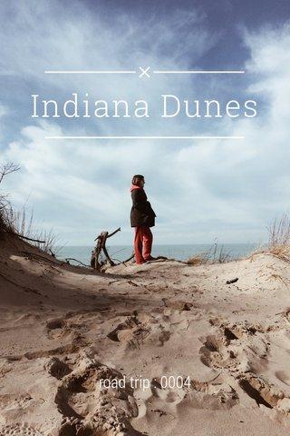Indiana Dunes road trip : 0004