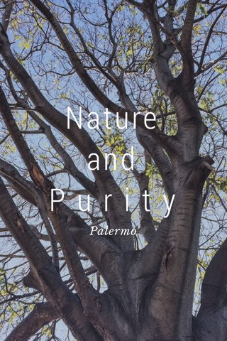 Nature and P u r i t y Palermo