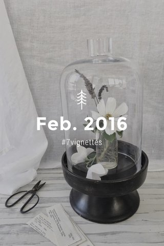 Feb. 2016 #7vignettes