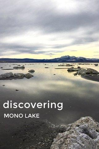 discovering MONO LAKE