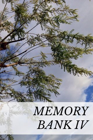 MEMORY BANK IV
