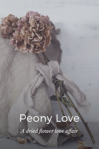 Peony Love A dried flower love affair
