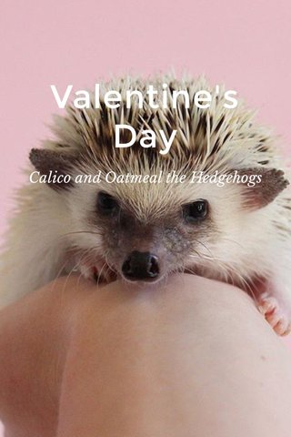 Valentine's Day Calico and Oatmeal the Hedgehogs