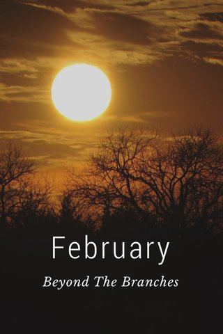 February Beyond The Branches