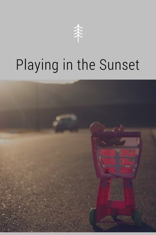 Playing in the Sunset