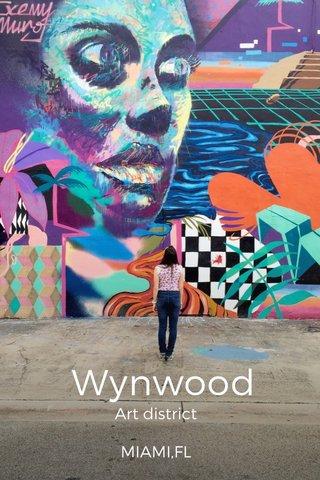 Wynwood Art district MIAMI,FL