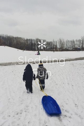 Sledding Fun 2016