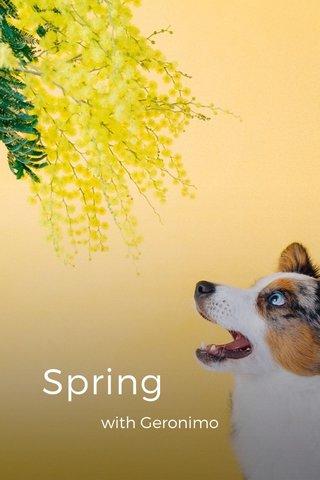 Spring with Geronimo