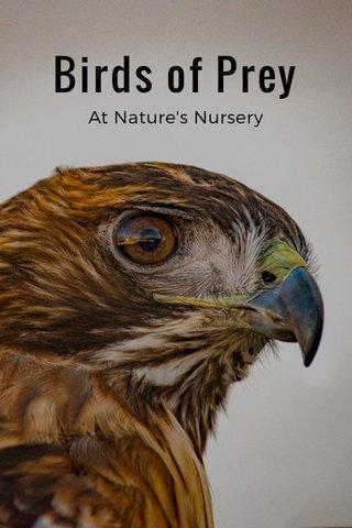 Birds of Prey At Nature's Nursery