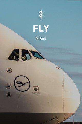 FLY Miami