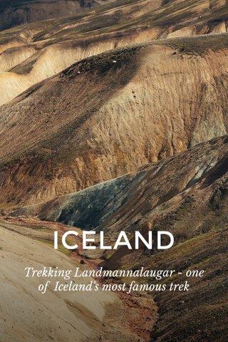 ICELAND Trekking Landmannalaugar - one of Iceland's most famous trek
