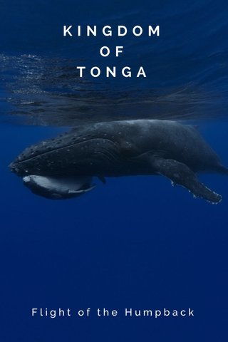 KINGDOM OF TONGA Flight of the Humpback