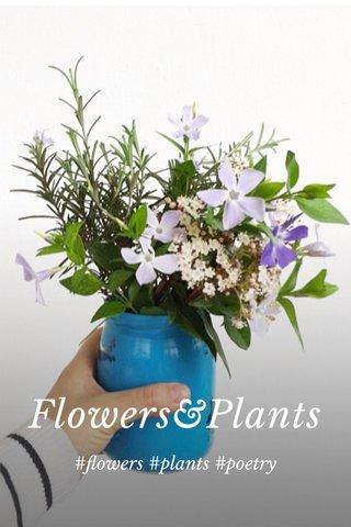 Flowers&Plants #flowers #plants #poetry