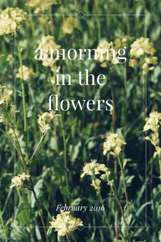 a morning in the flowers February 2016