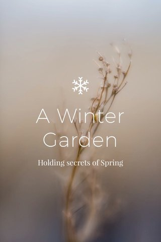 A Winter Garden Holding secrets of Spring