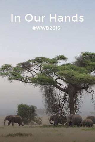 In Our Hands #WWD2016