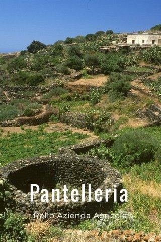 Pantelleria Rallo Azienda Agricola