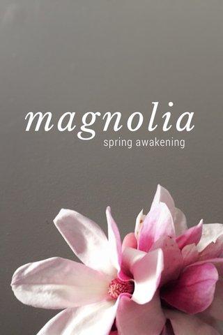 magnolia spring awakening