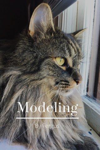 Modeling By Fergus
