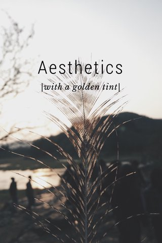 Aesthetics |with a golden tint|