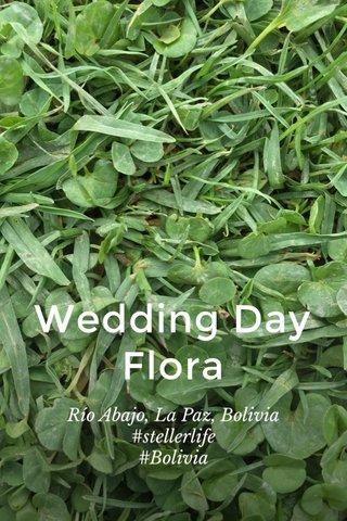 Wedding Day Flora Río Abajo, La Paz, Bolivia #stellerlife #Bolivia
