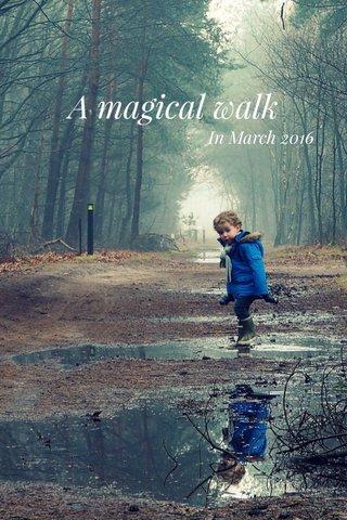 A magical walk In March 2016