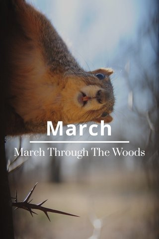 March March Through The Woods