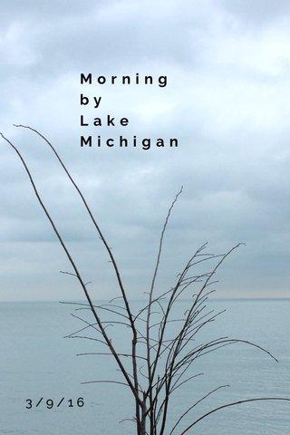 Morning by Lake Michigan 3/9/16