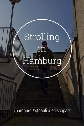 Strolling in Hamburg #hamburg #stpauli #jenischpark
