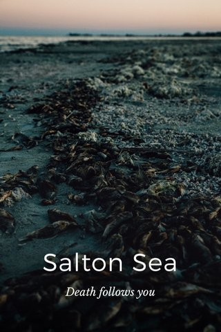 Salton Sea Death follows you