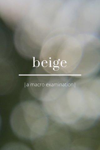 beige |a macro examination|