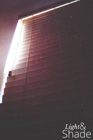 Shade Light