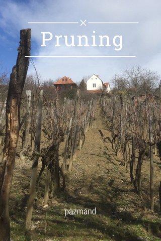 Pruning pazmand