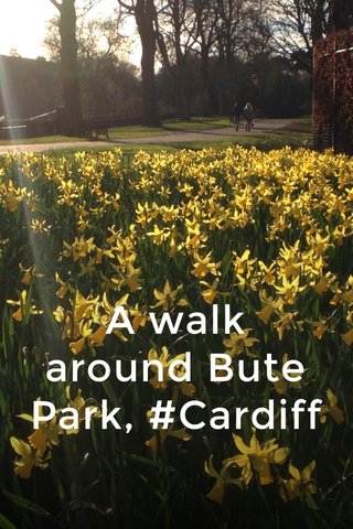A walk around Bute Park, #Cardiff