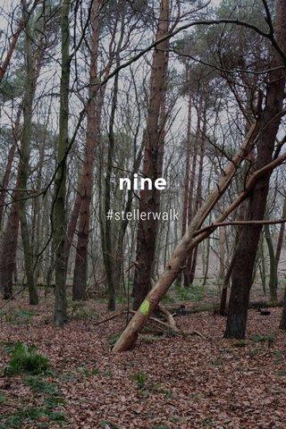 nine #stellerwalk