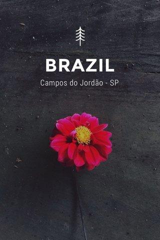 BRAZIL Campos do Jordão - SP