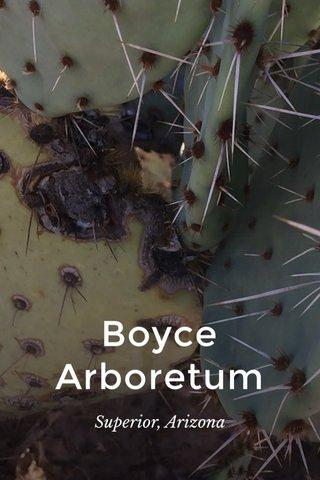 Boyce Arboretum Superior, Arizona