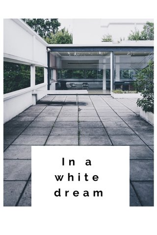In a white dream