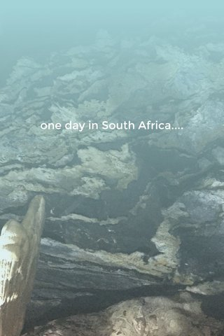 one day in South Africa....