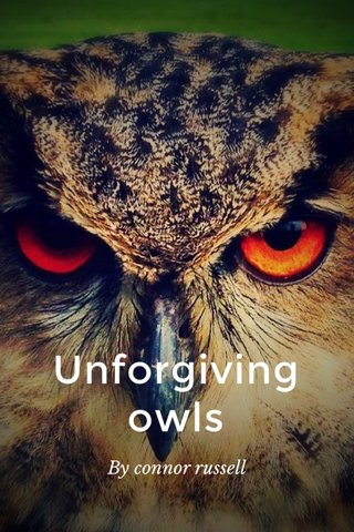 Unforgiving owls By connor russell